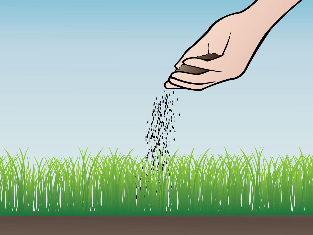 صورة انواع العشب الطبيعي , تعرف علي اهم انواع الاعشاب الطبيعيه المفيده