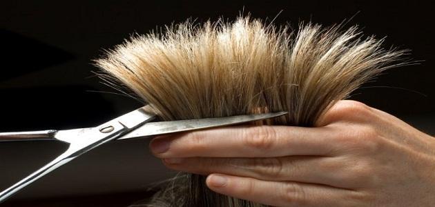 صورة تفسير قص الشعر في المنام , لا داعي للقلق قص الشعر خير