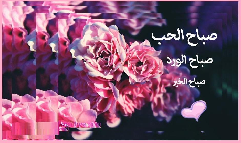 صورة اجمل رسائل صباح الخير حبيبي , احلى مسجات الصباح للحبيب الغالي 2902 5