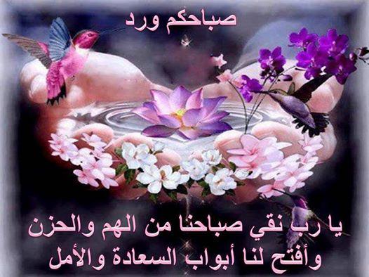 صورة اجمل رسائل صباح الخير حبيبي , احلى مسجات الصباح للحبيب الغالي 2902 6