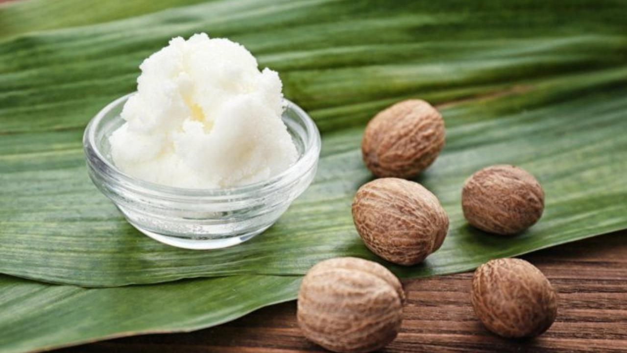 صورة فوائد زبدة الشيا للشعر , طرق طبيعية لعلاج الشعر الجاف