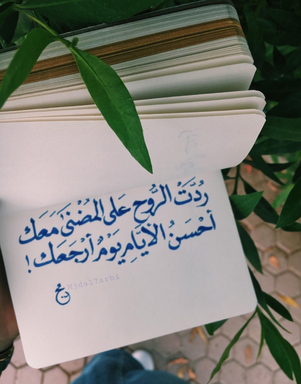صورة ابيات شعر عن الام لاحمد شوقى , شعر احمد شوقي عن الام
