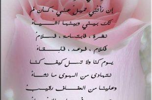 صور ابيات شعر عن الام لاحمد شوقى , شعر احمد شوقي عن الام