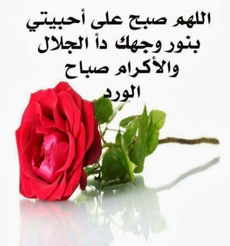 صورة كلام صباح الخير , اجمل رسائل صباح الخير 3953 4