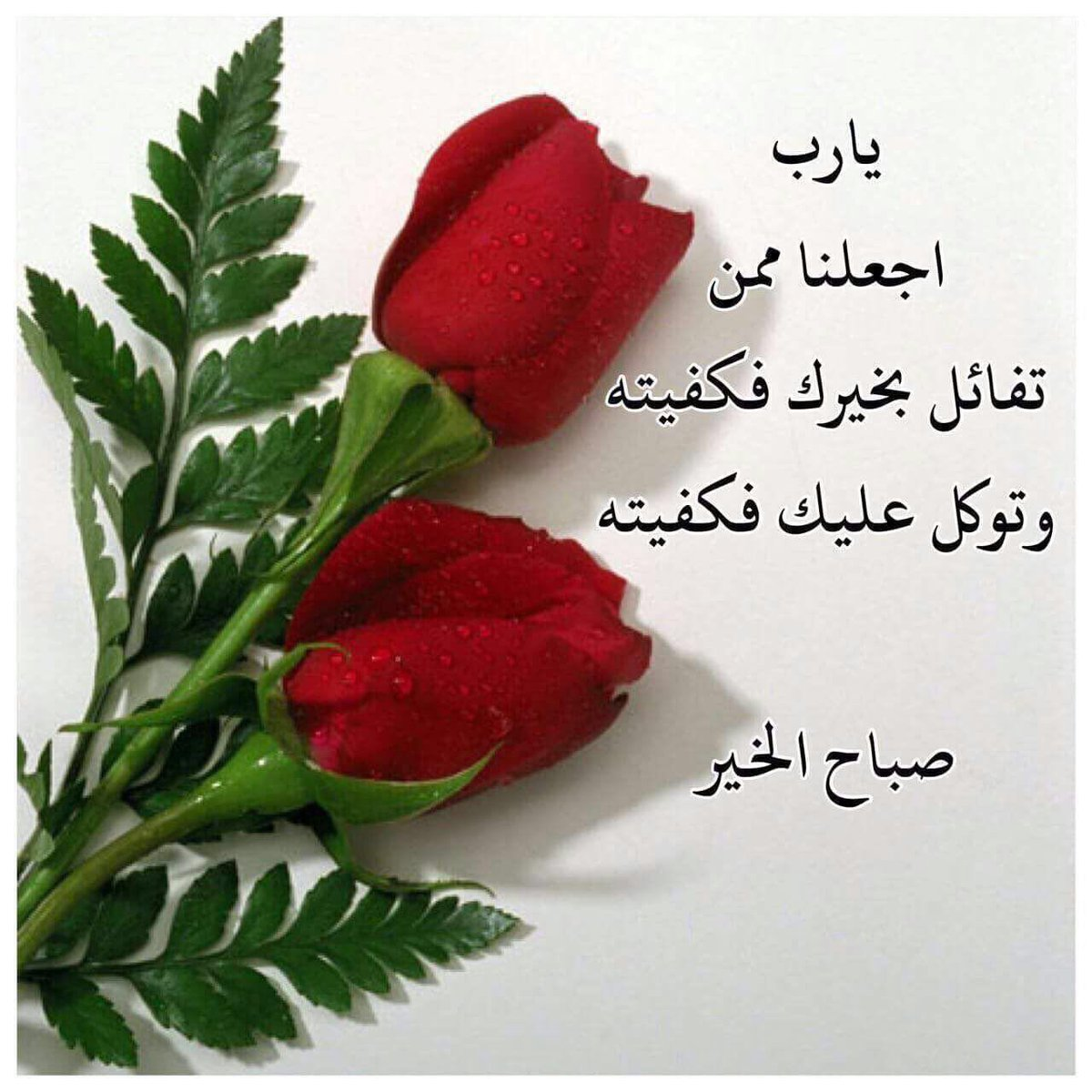 صورة كلام صباح الخير , اجمل رسائل صباح الخير 3953 5