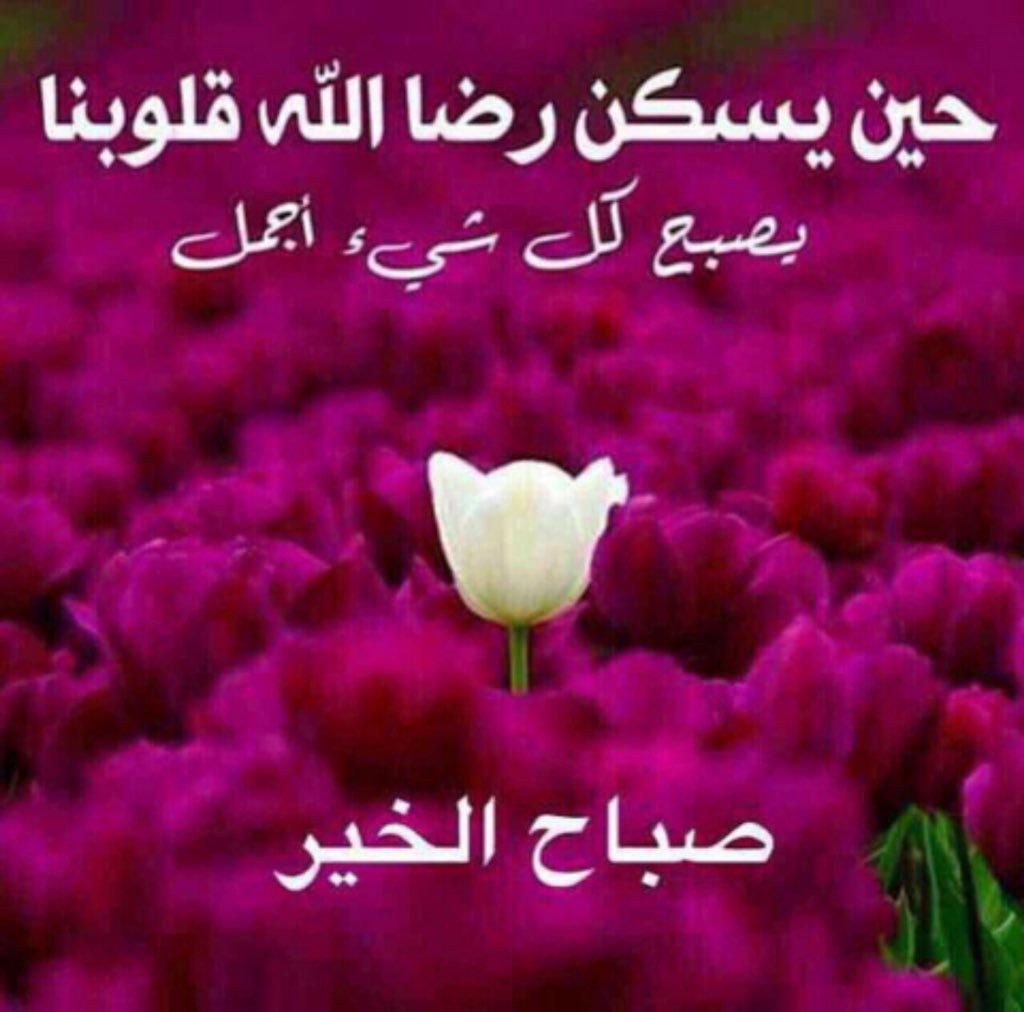 صورة تحية الصباح والمساء بالصور , كلمات صباحية ومسائيه روعه بالصور 2049 3