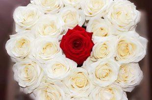 صورة اجمل صور باقات الورد , احلى واشيك بوكيهات ورد