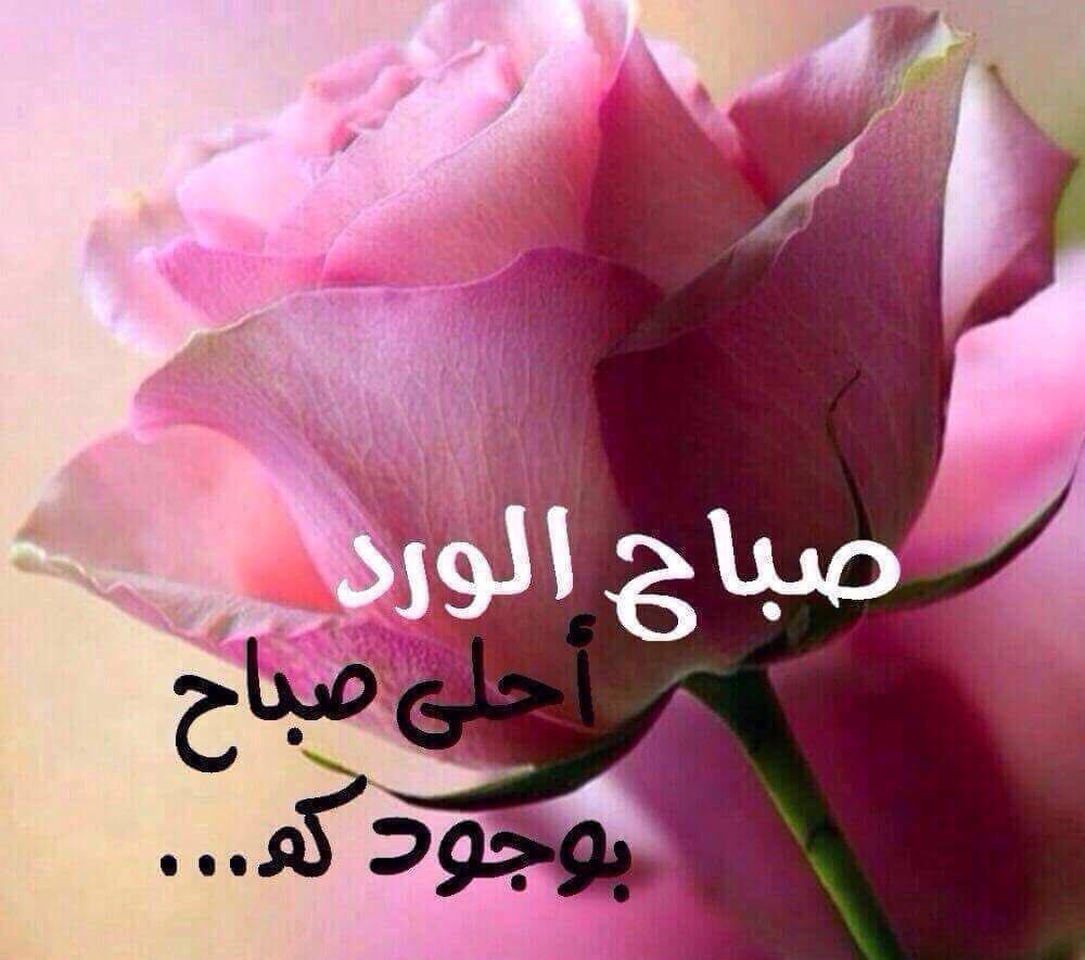 صورة صباح الخير ياحبي , اجمل عبارات صباح الخير يا حب 2758 3