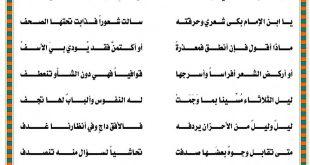 مدح الرجل الشهم , قصائد في مدح الرجال الشهمين