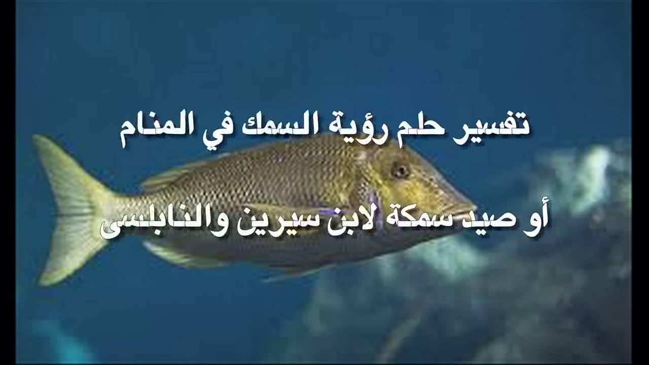 صورة سمكة كبيرة في المنام , تفسير السمك الكبير في المنام