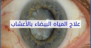 صورة علاج الماء البيضاء في العين بالاعشاب , وصفات عشبية لمعالجة المياة البيضاء علي العين