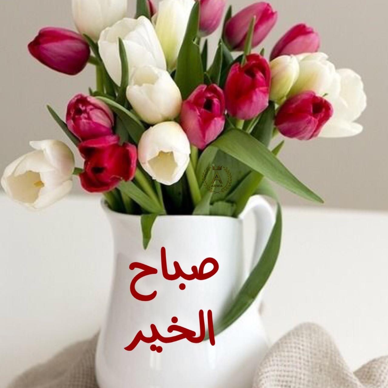 صورة صوري صباح الخير , تحيات صباحية مكتوبة علي اجمل صور 2216 8