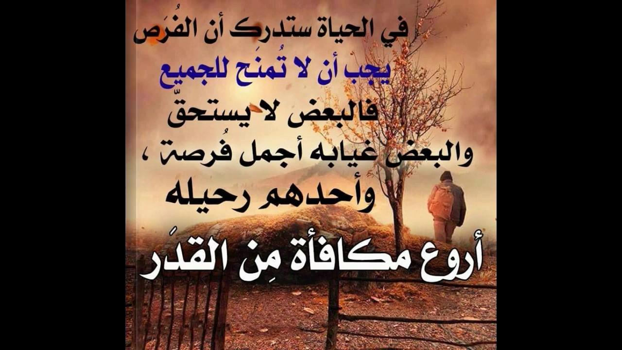 صورة احلى حكم وامثال , حكم و مواعظ جميلة بالصور