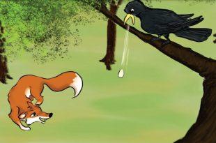 صورة قصة الثعلب والغراب , ما حدث للغراب المسكين