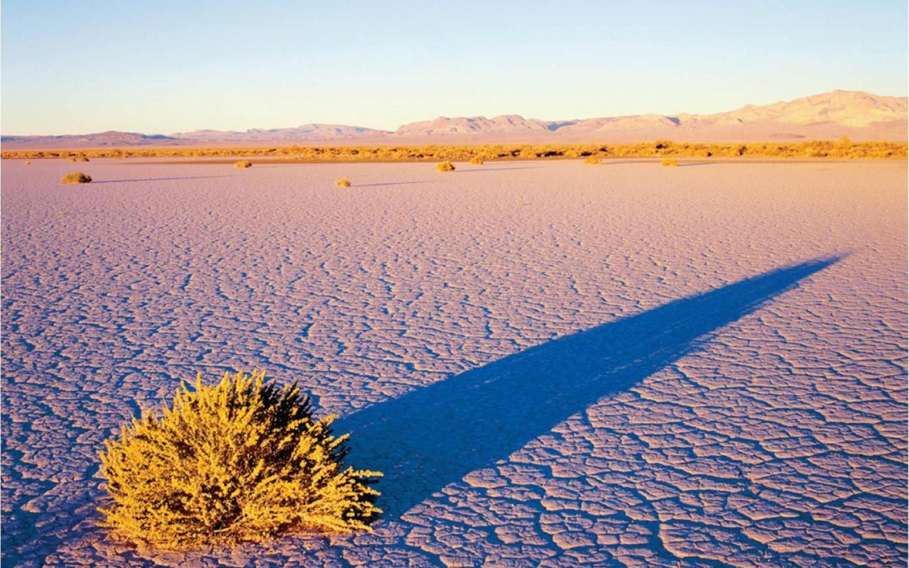 صورة اكبر صحاري العالم , معلومه عن اكبر صحارى العالم