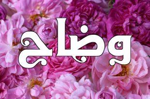 صورة معنى اسم وضاح , معناه واهم صفاته