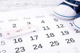 صورة اوقات الحمل بعد الدورة , فترة التبويض وعلاقتها بالحمل بعد الدورة