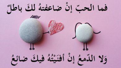 صورة اروع كلام في الحب , كلام من القلب 513 7