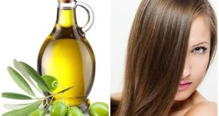 ما فائدة زيت الزيتون للشعر , تأثير رهيب لزيت الزيتون علي الشعر الجاف