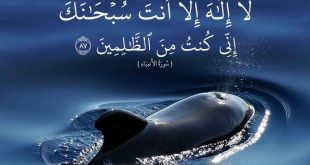 دعاء مستجاب عند الله عز وجل , فضل دعاء ذي النون في استجابة الدعاء