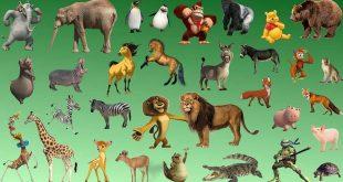 تعرف على معلومات غريبه عن الحيوان , من غرائب الحيوانات
