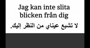 صورة اروع كلام للعشاق , كلام غزل بالانجليزي 1811 4